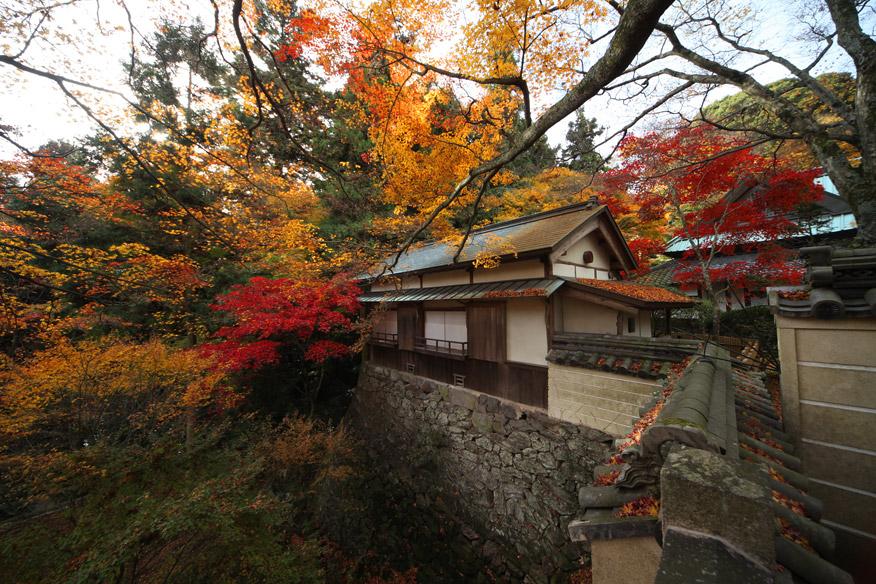 根香寺の紅葉 SIGMA 12-24mm