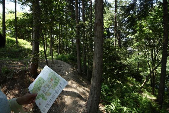 マップを持って森の中へ