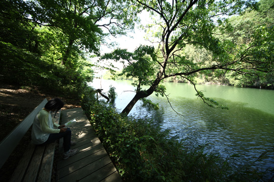 池のほとりのベンチ